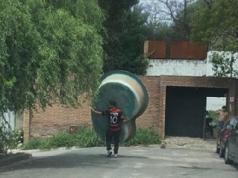 Un vecino tomó la foto del momento del insólito robo.