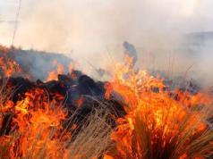 joven-quemado-incendios-la-cumbre-cordoba