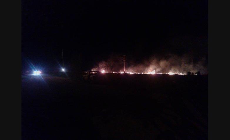 Ardieron campos.