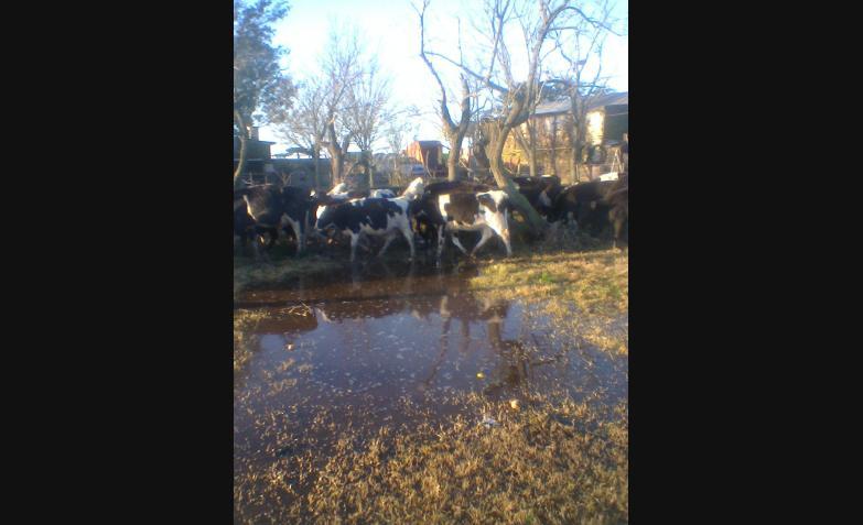 Inundaciones zona rural