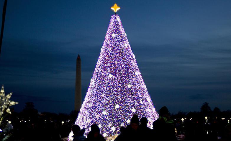 El arbolito en el Monumento a Washington.