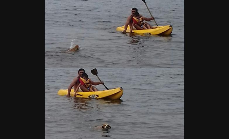 Deporte acuático en la foto de Cris Buso.