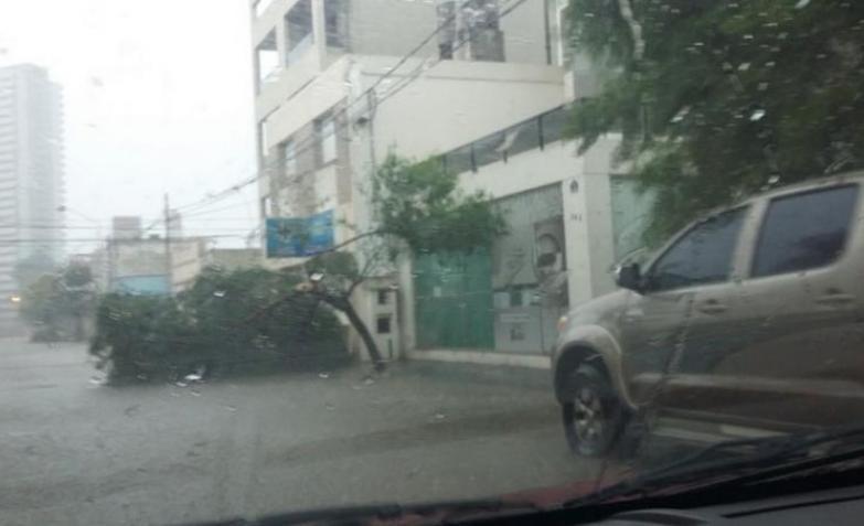Fuerte temporal en Río Cuarto.