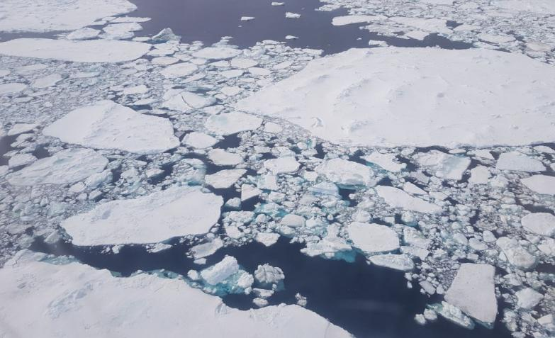 Antártida-Cobertura-Especial-El-Doce-Base-Esperanza