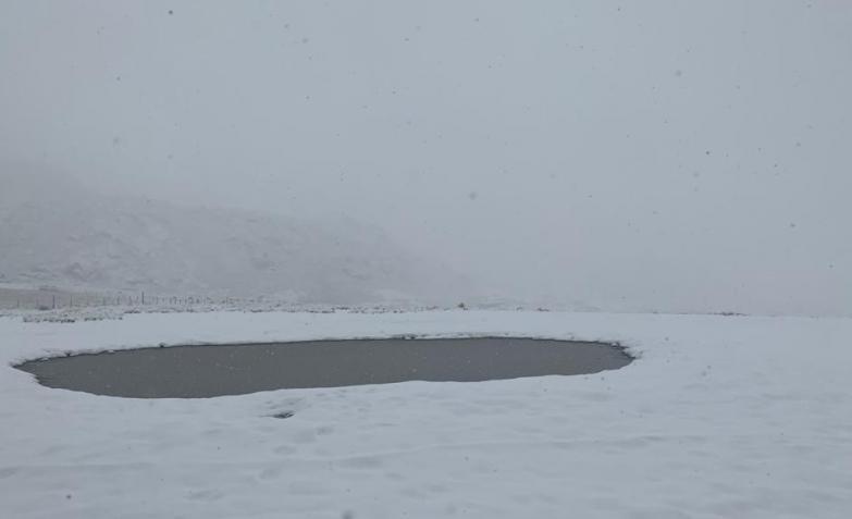 champaqui nieve