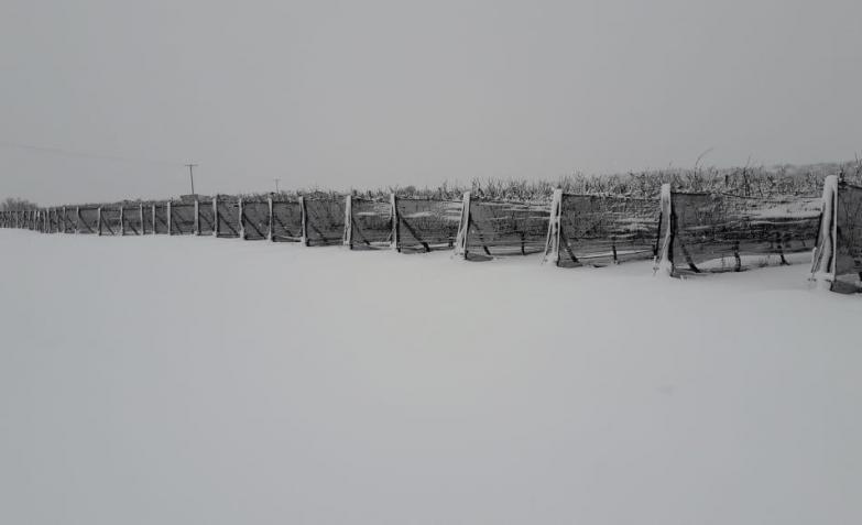 nieve norte cordoba