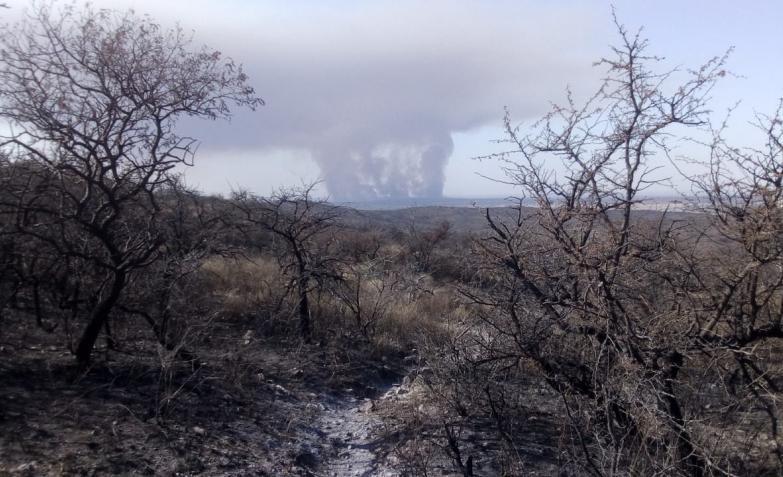 Incendio-Forestal-La-Calera
