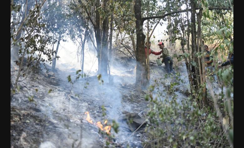 Vecinos intentan apagar el fuego en el Pan de Azúcar. / Foto: Lucho Casalla El Doce