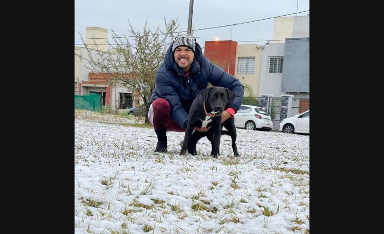 tyago griffo nieve