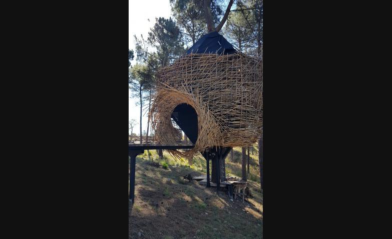 Casa-del-arbol-El-Nido-Potrero-de-Garay