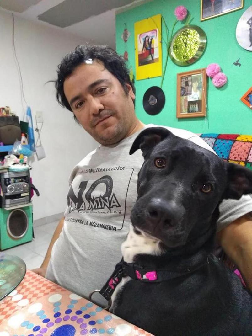 """Familia multiespecie: un juez consideró a una perra como una """"hija no humana""""  - ElDoce.tv"""