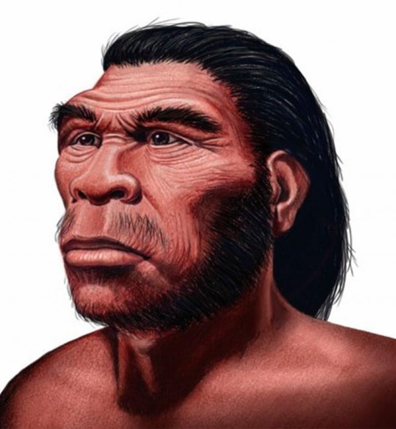 científicos aseguran que así será el rostro humano en el futuro