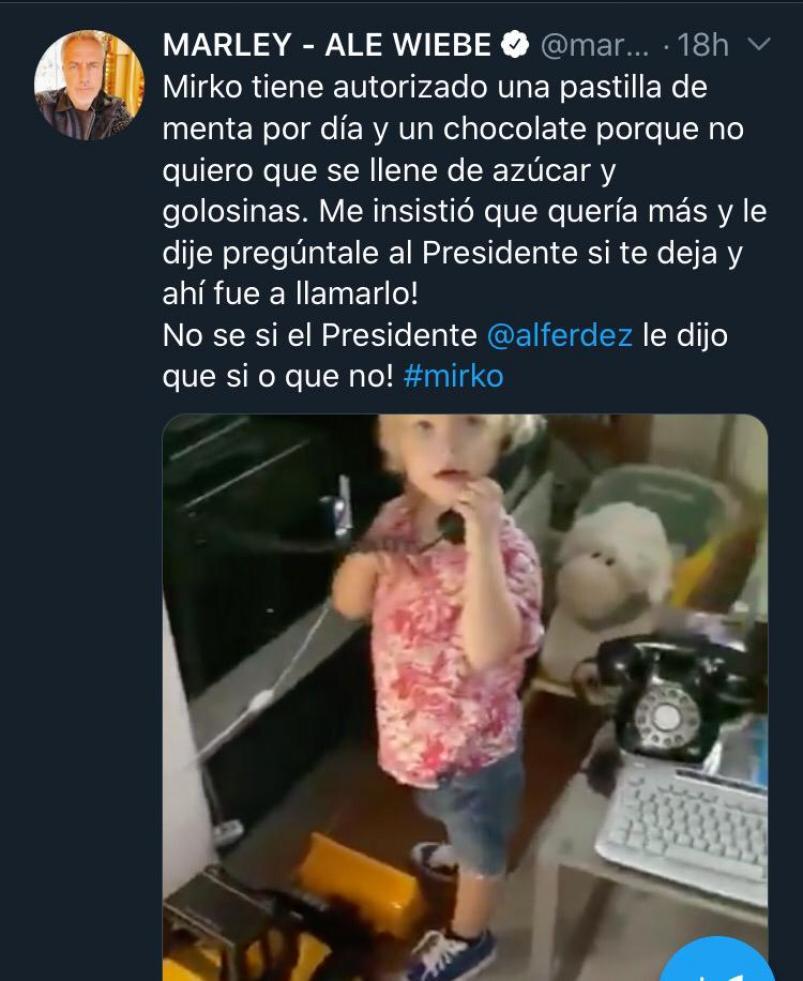 El divertido cruce de Alberto Fernández y Marley en las redes sociales