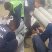 cachorros-rescate-perros-policias-empleados-cloacas-tubos-cemento-barrio-almirante-brown-el-doce-y-vos-video