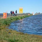 inundaciones-arias-cordoba-campo-agua-lluvia-vialidad-provincial-intendente-productores