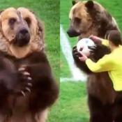 oso entrega pelota al árbitro