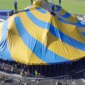 Cirque-Du-Soleil-Amaluna