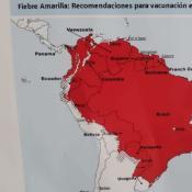 Por un brote en la Argentina y en el país vecino, recomiendan vacunarse contra el sarampión.