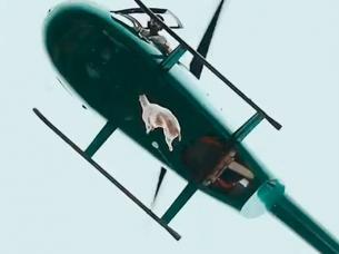 nuevo-video-cordero-helicoptero.jpg